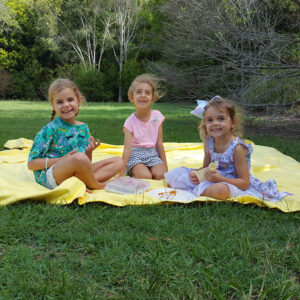 The Big Towel Yellow Summer Picnic Blanket